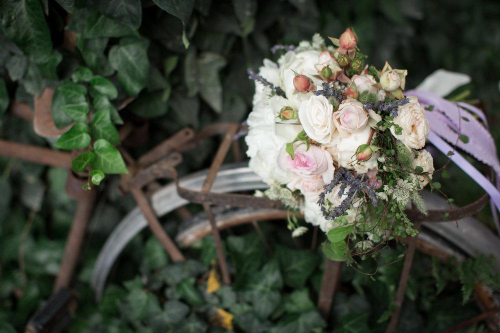 lavender-love-172-X3.jpg