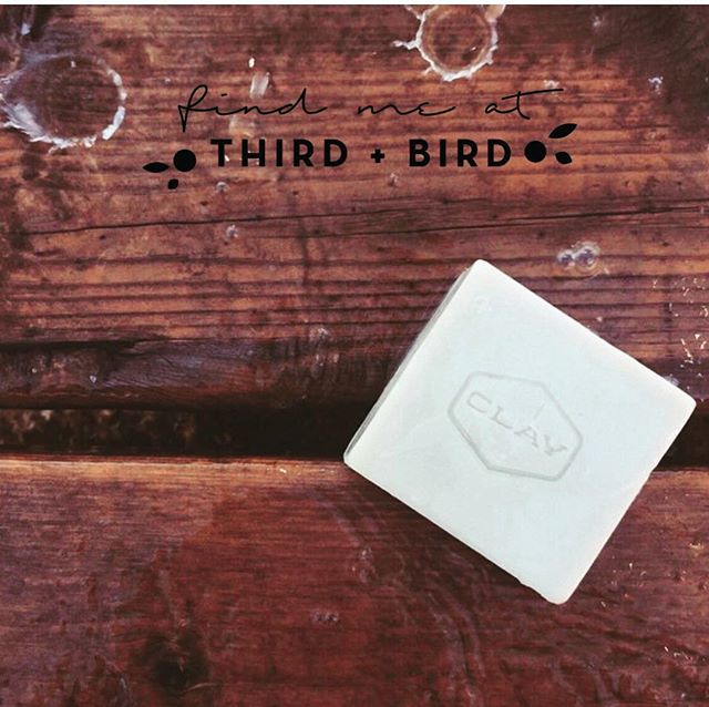 Third + Bird Spring Market 2019! • • Saturday May 4 // 10-6 Sunday May 5 // 11-4 ** The Bay Downtown Winnipeg ** • • Admission $8 online or $10 at the door.  Unlimited admission all weekend. Kids 12+ under free! • • #thirdandbird #spring #market #local #winnipeg #shoplocal #supportlocal #madelocal