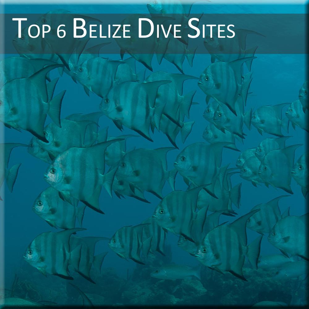 Top-6-Belize-Dive-Sites.jpg