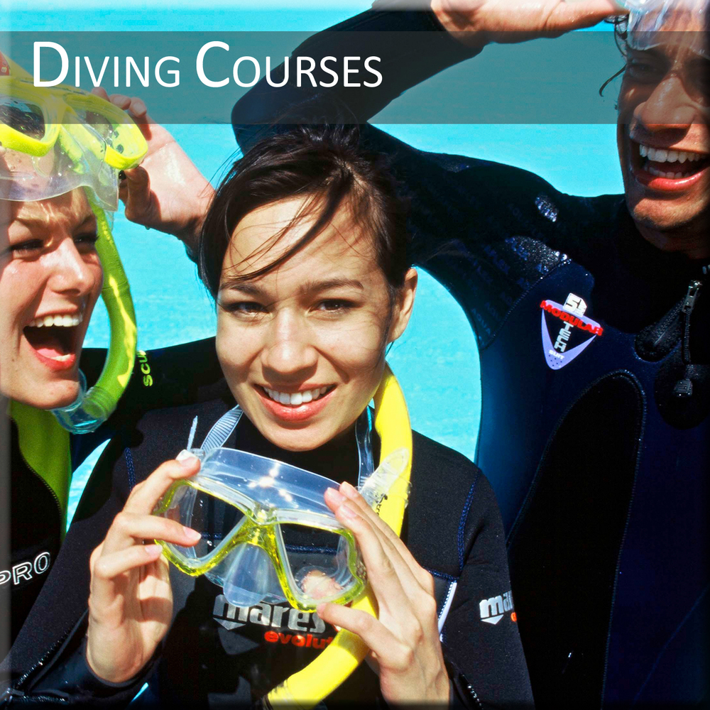 Diving-Courses.jpg