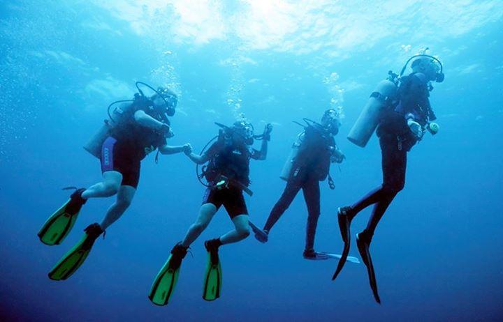 four divers.jpg