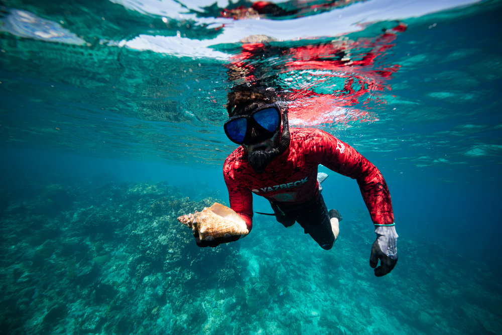 Lobster/Conch Hunt - Travel around the Cayes to hunt for your dinner! This is a snorkel adventure where you hunt Lobster (from June - Feb.) or Conch (from Oct. - June) and experience the underwater beauty of Belize.