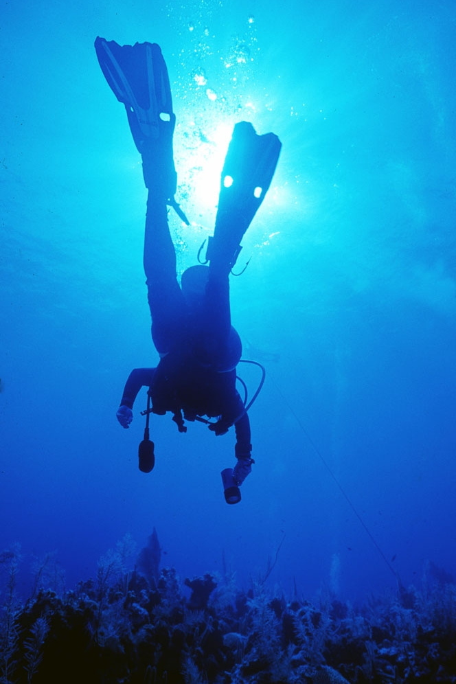 island adctivites - Explore the Belize Barrier Reef, surroudning cayes, and more with our island activities