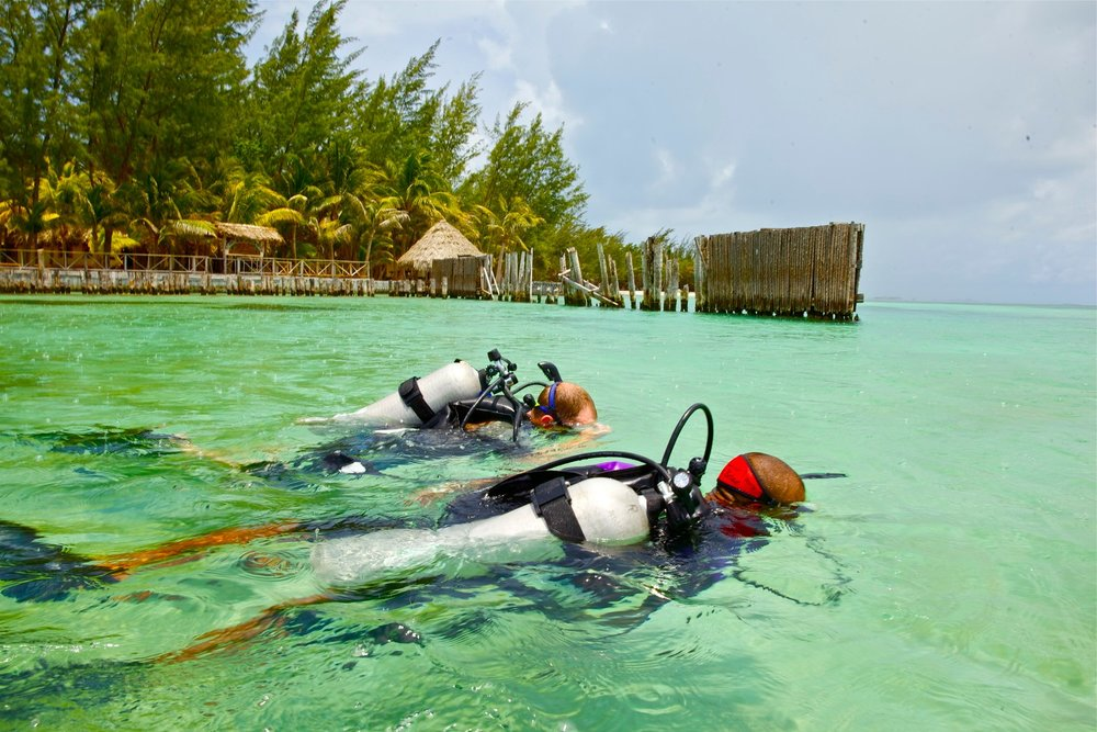 Scuba Diving at Thatch Caye