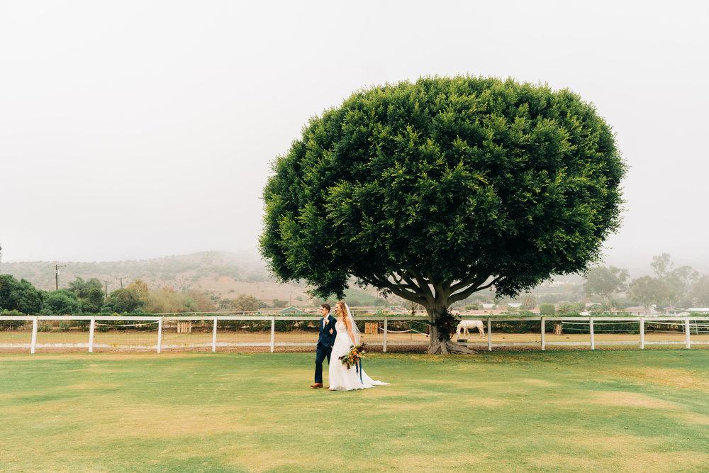 allie-shupe-tyler-wiggins-wedding-santa-barbara 178.jpg
