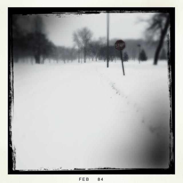 HUMBOLDT PARK WINTER