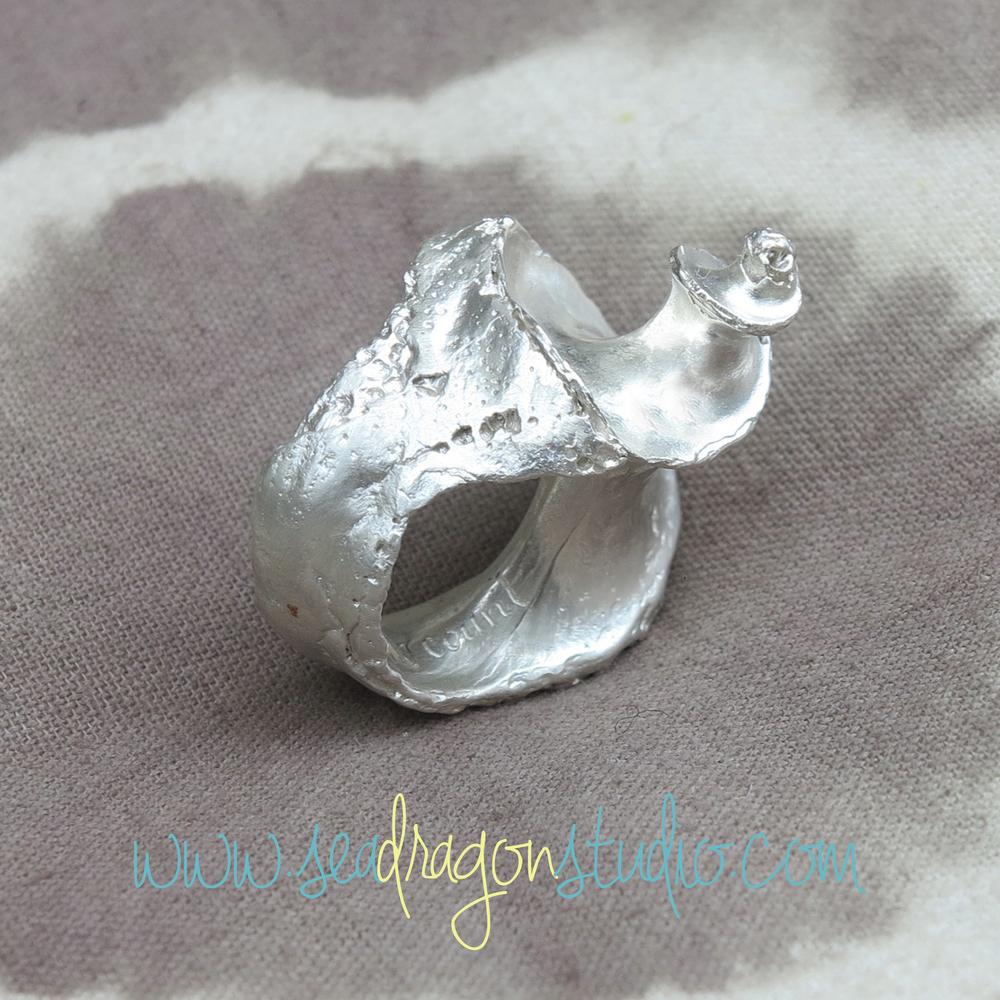 Spiral Silver Shell Ring 2.JPG