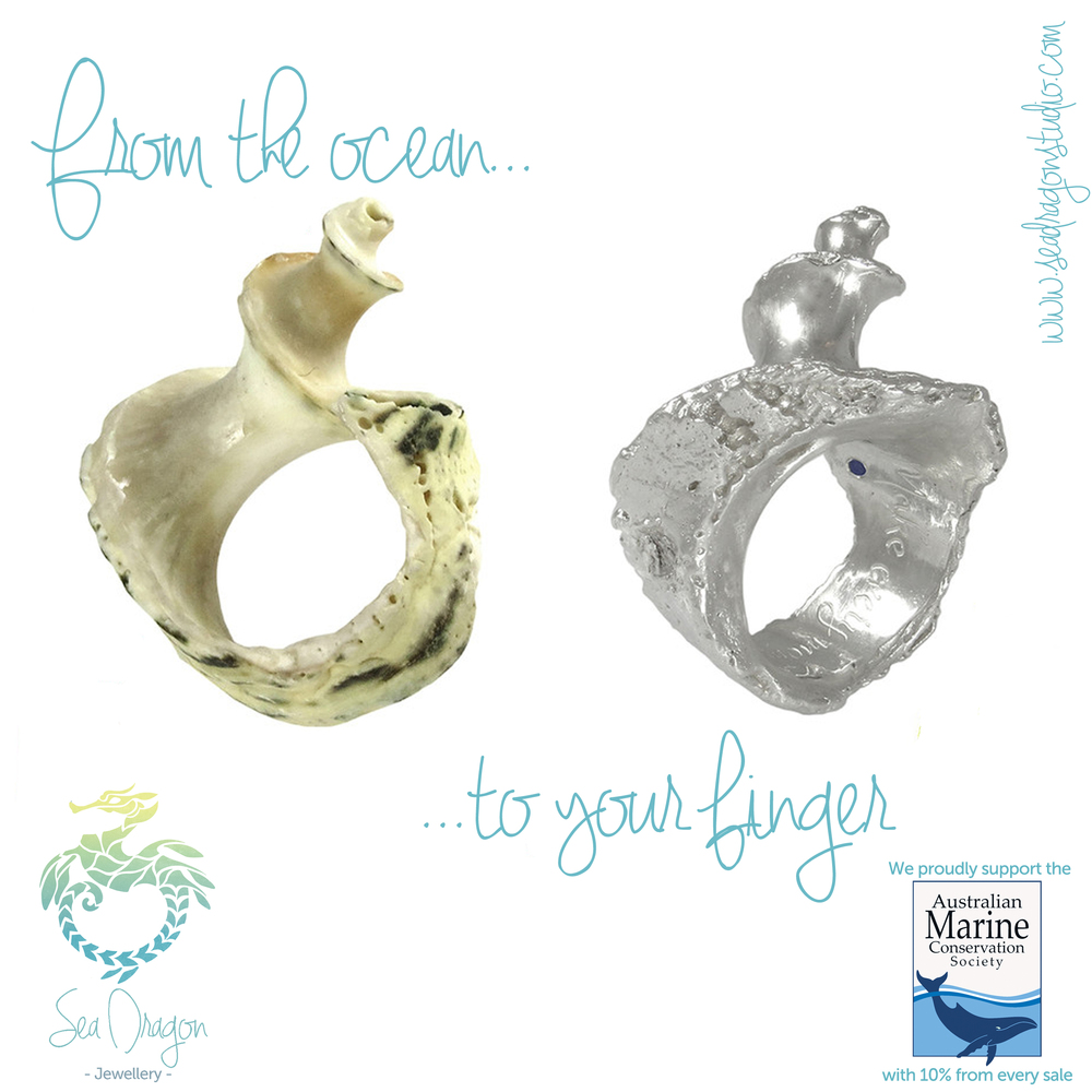 Spiral Shell Ring and shell combo.JPG