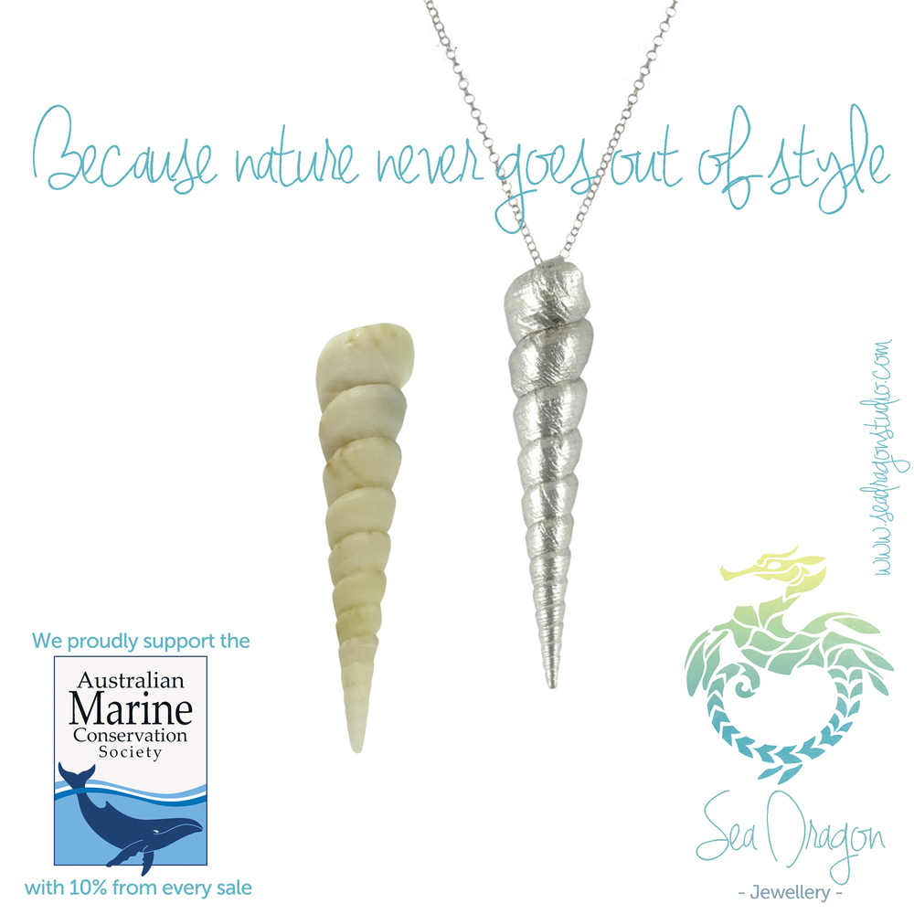 Spiral Silver Shell Necklace plus shell.JPG
