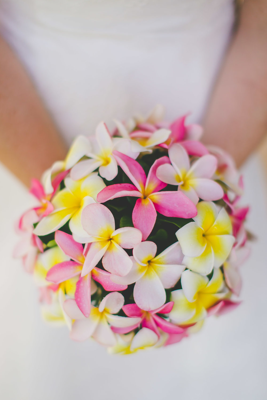 Tropical flowers Rarotonga