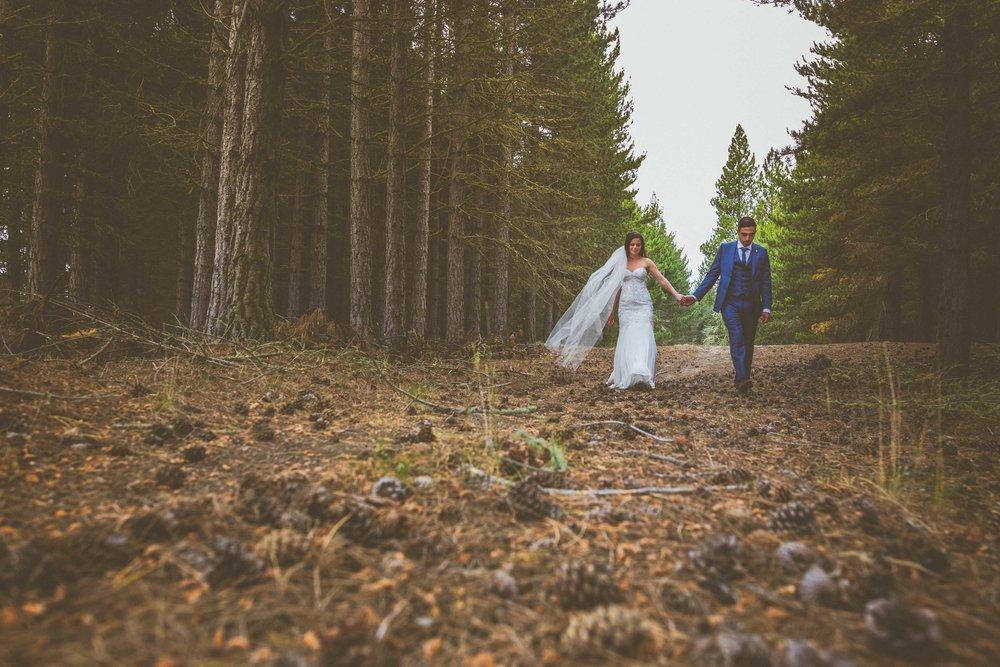 Pine Forest Lake Tekapo Wedding