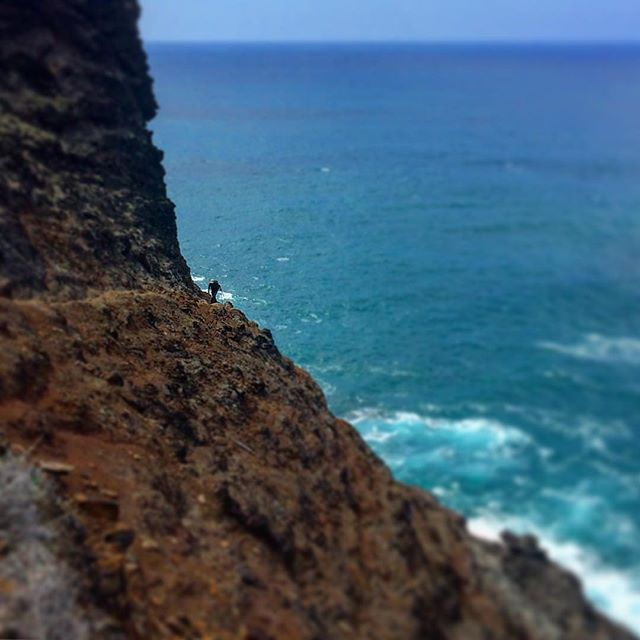 Trails inspire, energize and keep us sane at KOOEE!, but sometimes they're just plain scary. (And they're the best ones!) This is the infamous Crawlers Ledge, on the amazing Kalalau trail.  #wheredoyoukooee #kauai #trailrunning