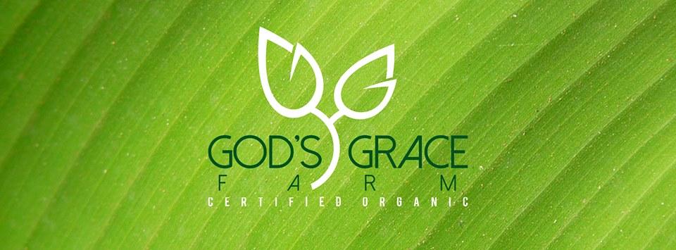Godsgracelogo
