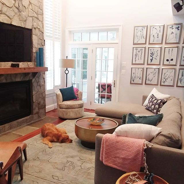 At long last, we have a complete sofa! Barley is happier about it than he looks 😁 #vestainteriors #vestaprojects