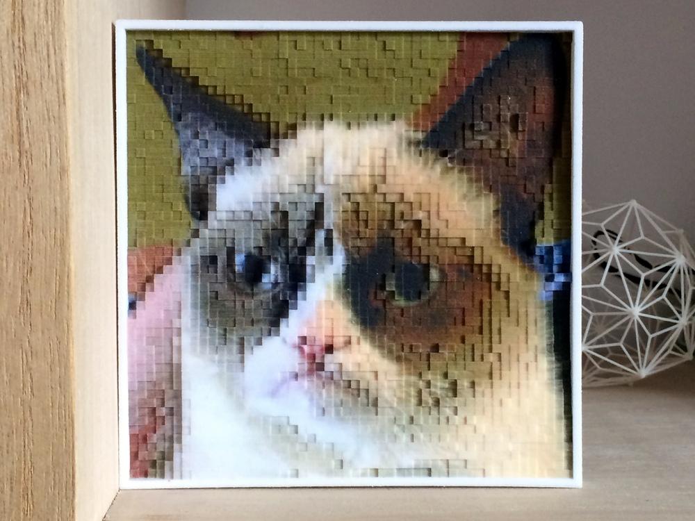 PhotoPixels | $99 - Turn your photos into 10.000 3D Pixels, full color.