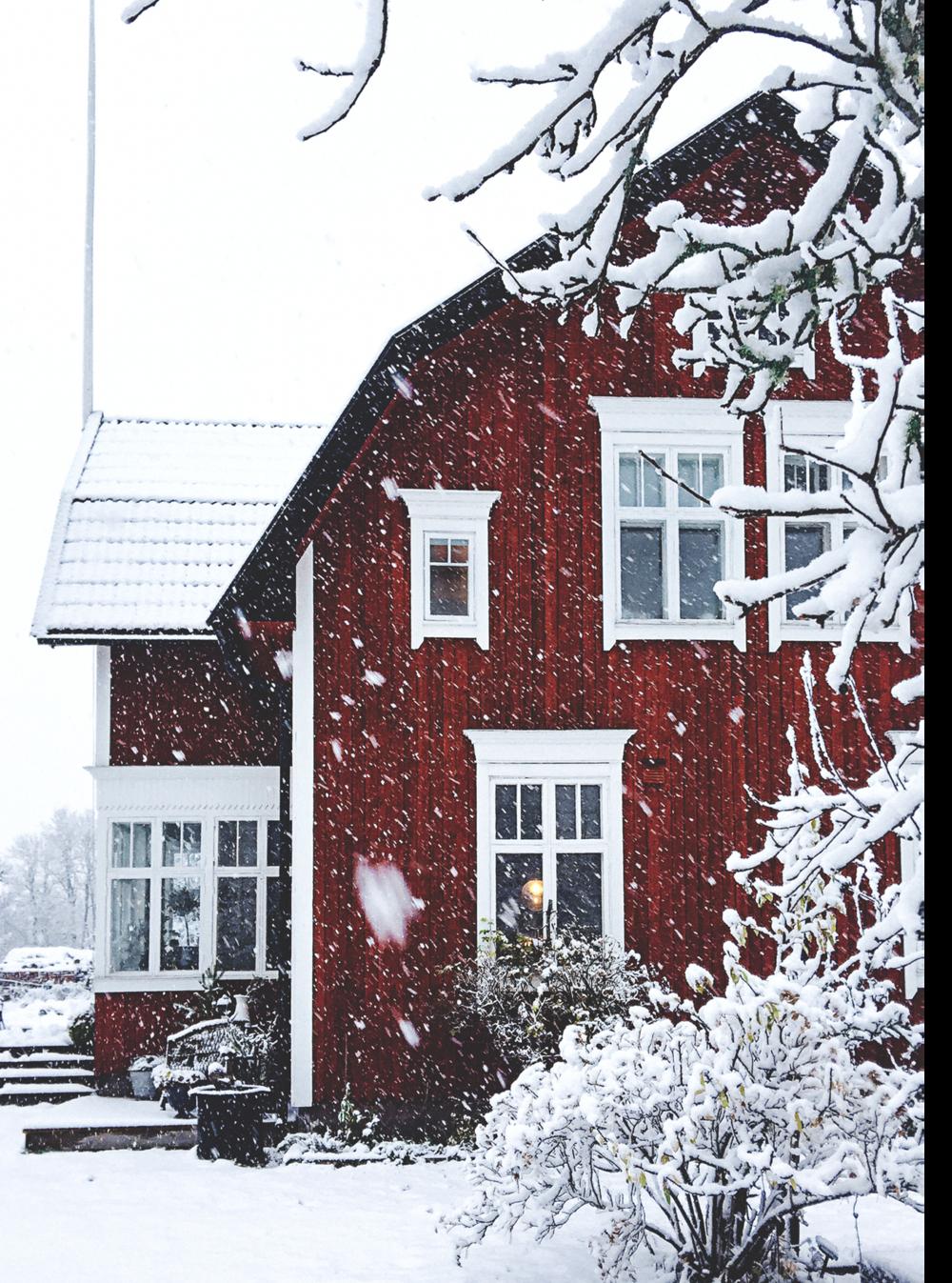 Så himla lägligt, det snöade första advents-helgen!