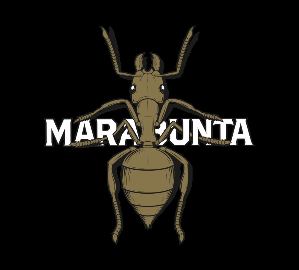 marabunta-illustracion3.png