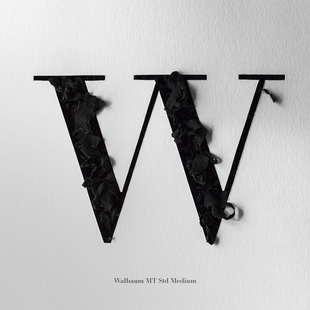 Letters_36days_of_type_2_W.jpg