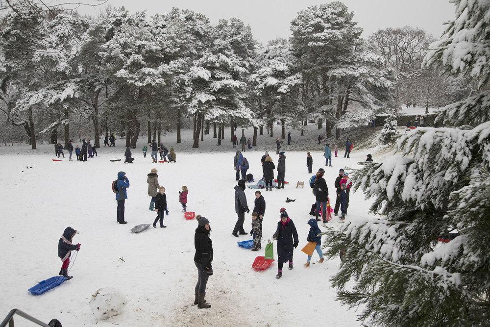 20171210_snow birmingham_A_024.jpg