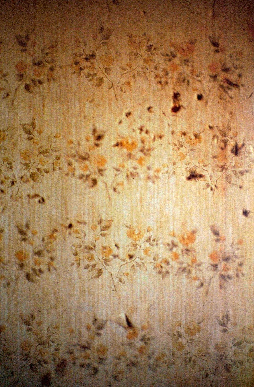 wallpaper7.jpg