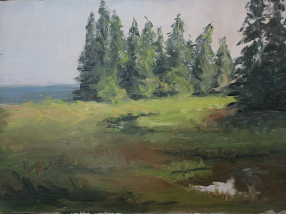 In my painting life I particularly love to work en plein aire and catch the slanting colorful light of late afternoon or the early miracle of sunrise.