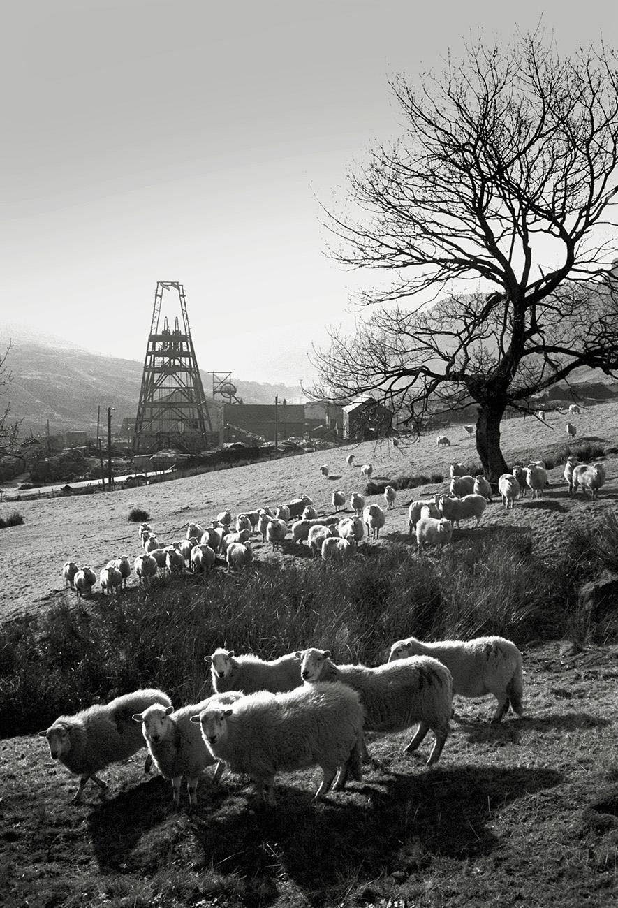 Welsh Mine Head.jpg