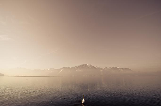 12_Life_Lausanne_Montreaux_Blog7.jpg