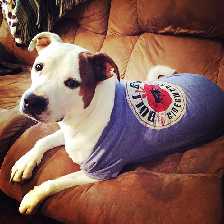 Dogs in Bull City Ciderworks t-shirts are the best!