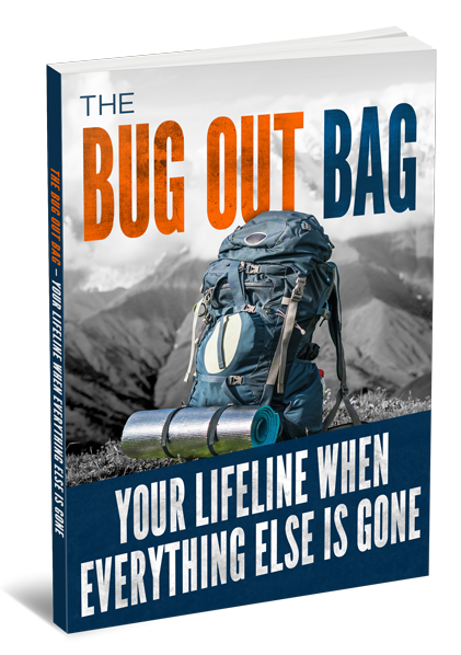 The-Bug-Out-Bag-Your-Lifeline-When-Everything-Else-is-Gone-3D-Large.png