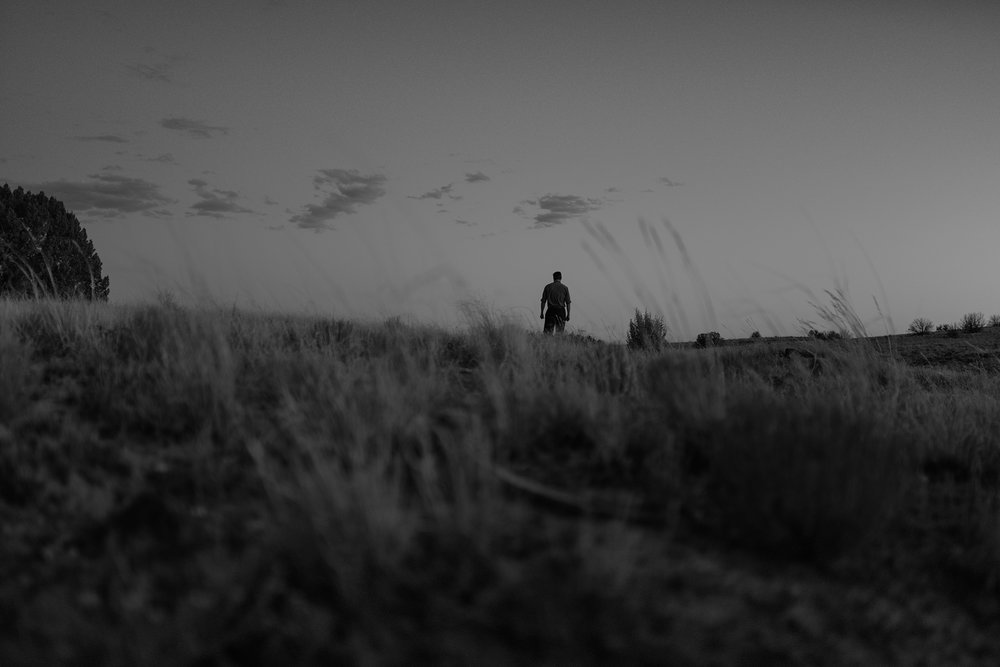 wolverine-desert-deanbradshaw-374.jpg