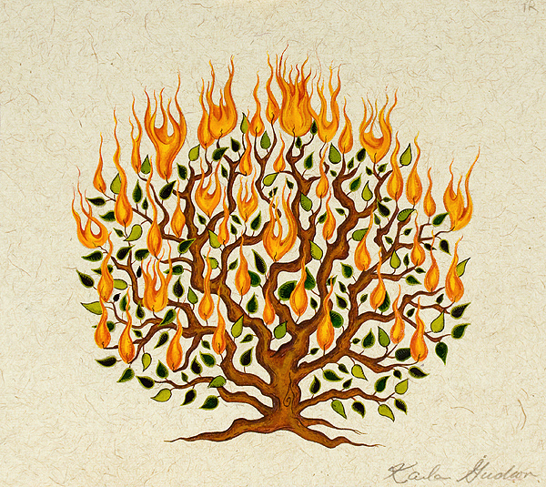 Burning-Bush9x10.jpg