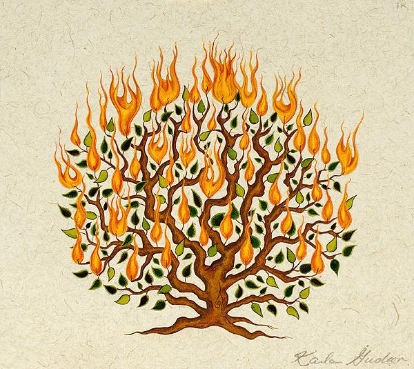 Burning-Bush9x10.jpg
