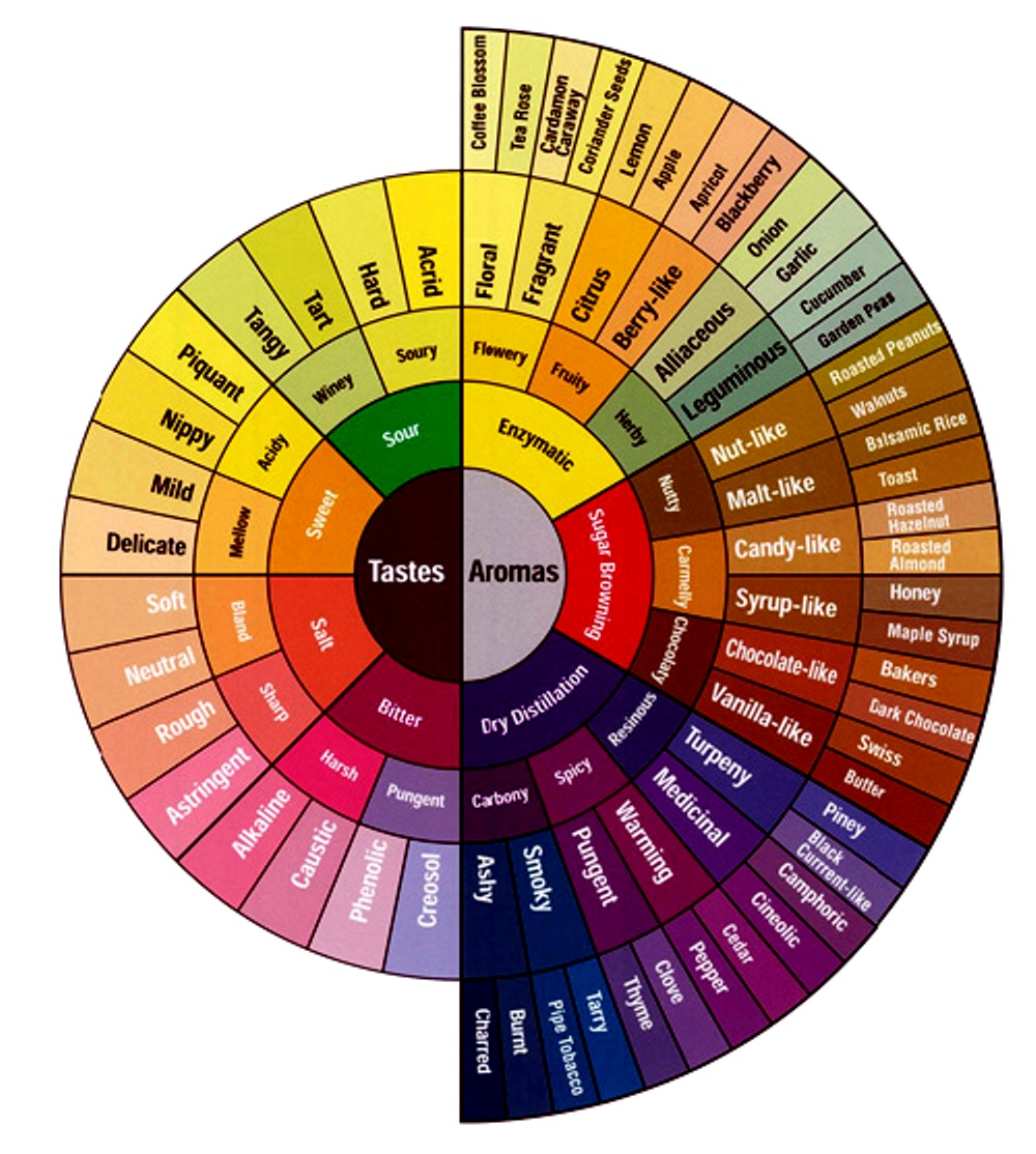"COFFEE AWARENESS MONTH, DAY 12: The Taste of Coffee (Part I: Smelly is Tasty)   The picture above is the ""Coffee Tasters Flavor Wheel,"" an industry-standard illustration of the most common tastes and aromas potentially present in coffee. The left side describes potential ""tasteable"" flavors — things that your tongue can register — while the right side describes aromas, perceptible by our noses. What's interesting is that all the really identifiable flavors — blackberry, dark chocolate, clove — show up on the ""aroma"" side of the wheel.   Two things:   1.) Just by looking at the graphic, it's obvious that a lot of what we think we ""taste"" is actually what we smell. (""Flavor"" = Tastes + Aromas) This makes sense, since we've found that distinct aromas come out more clearly when grinding coffee than in the finished product of brewed coffee. (For example: We have in stock a Sundried Ethiopia Sidamo right now that, when first ground, smells more like a blueberry muffin than coffee. But, once brewed, the blueberry notes are still present in the flavor, though muted and sort of masked by the coffee's, um, ""coffee"" flavor.)   2.) When we (or anyone) describe a particular coffee in terms of its ""notes"" and ""undertones,"" what we're doing is not so much pinpointing exact flavors, but rather filtering the coffee through our experience of all the tastes and aromas we've saved up in our memories. Thus a baker may be able to better discern and differentiate flavors in the ""Sugar Browning"" category of the wheel, while a gardener more easily picks out the flavors on the ""Enzymatic"" end of the spectrum.   There's a TON to say on flavor, and over the next few days, we'll look into some of that. But for now, don't fret if you've never tasted balsamic rice or coriander seeds in your coffee — we're not sure we have, either. Instead, next time you pick up your cup for a sip, slurp it and chew it and swish it and smell it, and see where your mind goes. Because flavor, after all, really begins and ends in your head."