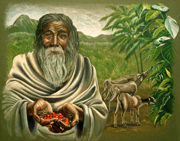 "COFFEE AWARENESS MONTH, DAY 3: WHERE COFFEE CAME FROM The origins of coffee are murky — we know our precious plant was first harvested in what is now Ethiopia, but who discovered it and when is up for debate. All of the possibilities are interesting, but our personal favorite is the legend of Kaldi.  From Wikipedia's ""History of Coffee"" entry :     (A) goat-herd, Kaldi, who, noticing the energizing effects when his flock nibbled on the bright red berries of a certain bush, chewed on the fruit himself. His exhilaration prompted him to bring the berries to a Monk in a nearby monastery. But the monk disapproved of their use and threw them into the fire, from which an enticing aroma billowed and the monks came out to investigate. The roasted beans were quickly raked from the embers, ground up, and dissolved in hot water, yielding the world's first cup of coffee. The Ethiopian ancestors of today's Oromo ethnic group, were the first to have recognized the energizing effect of the native coffee plant."
