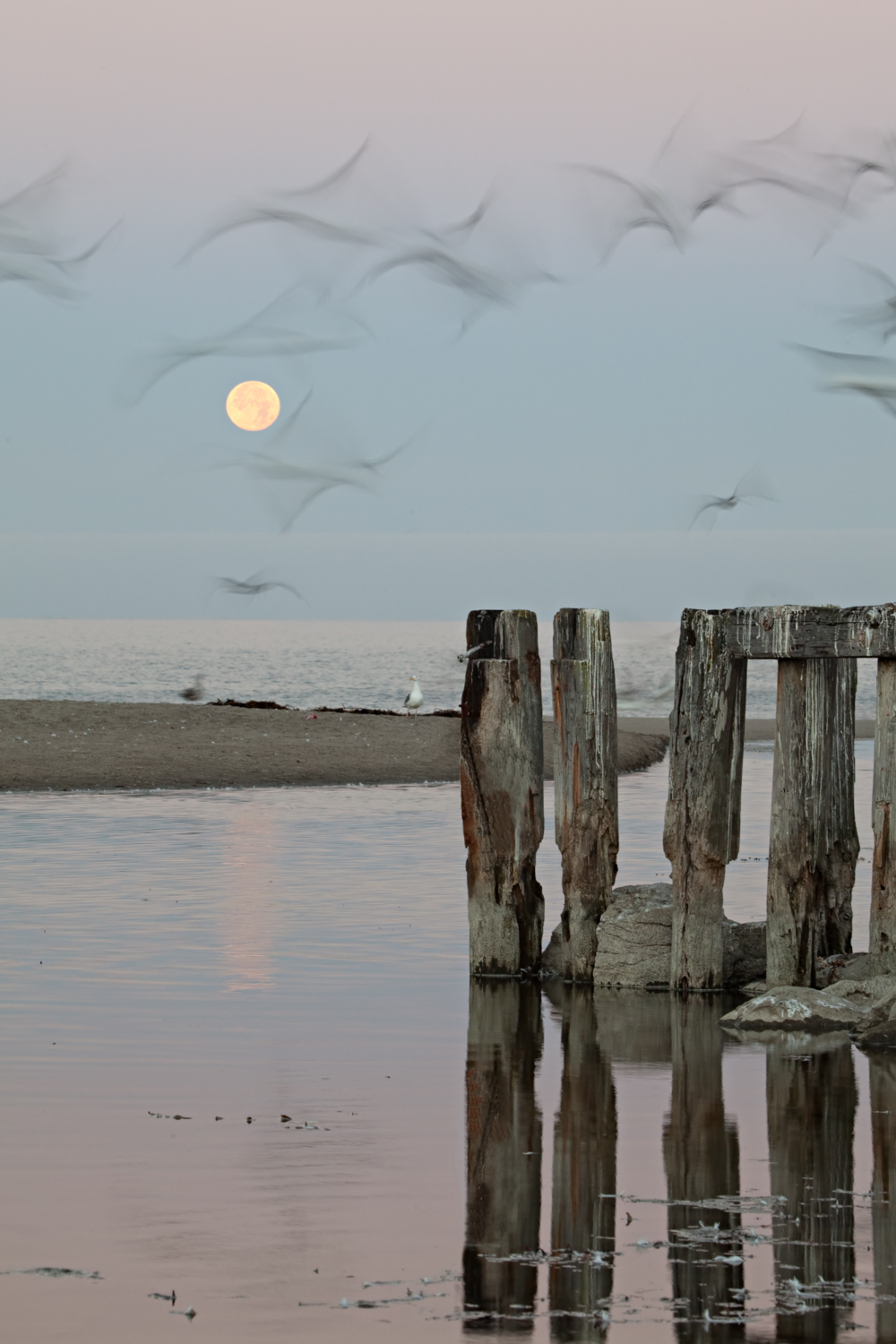 Moonset over Rio Del Mar Beach   Purchase