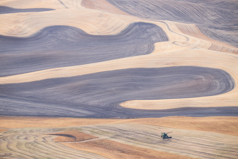 Patterns of the Palouse   Purchase