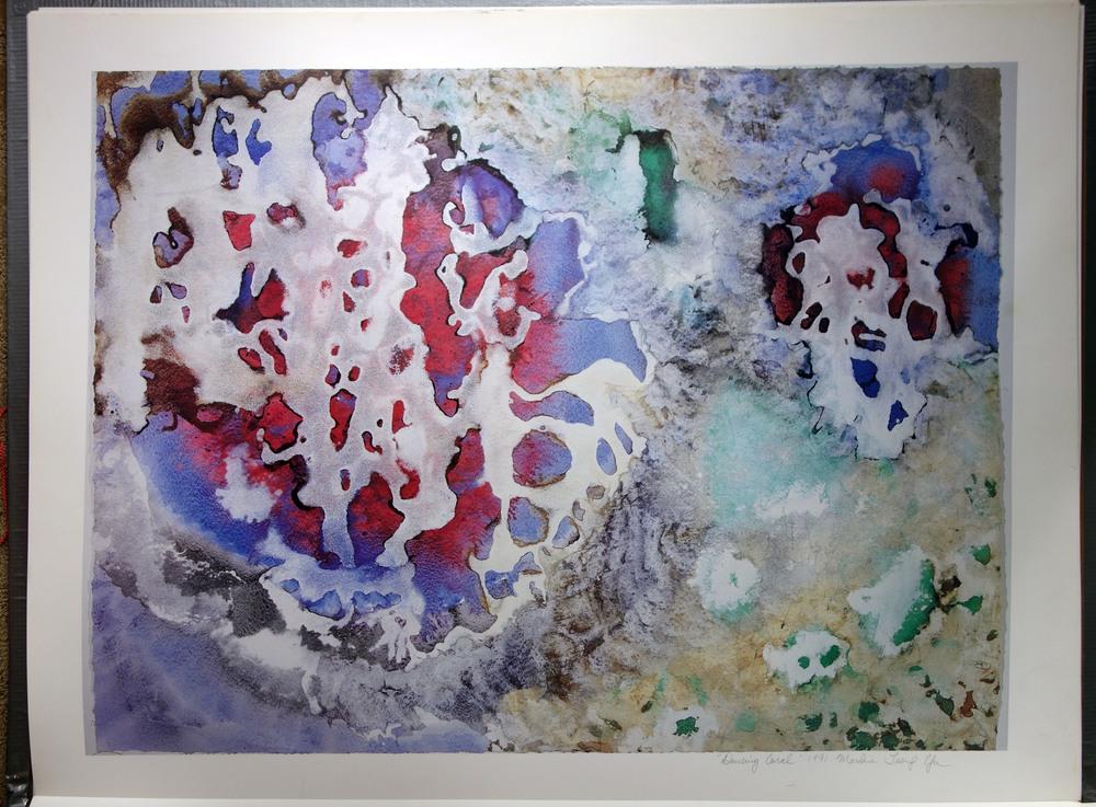 """""""Dancing Coral"""" 1991"""