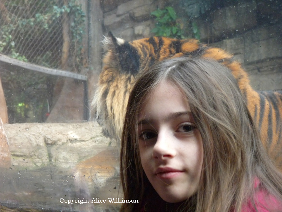 Rowen and a tiger