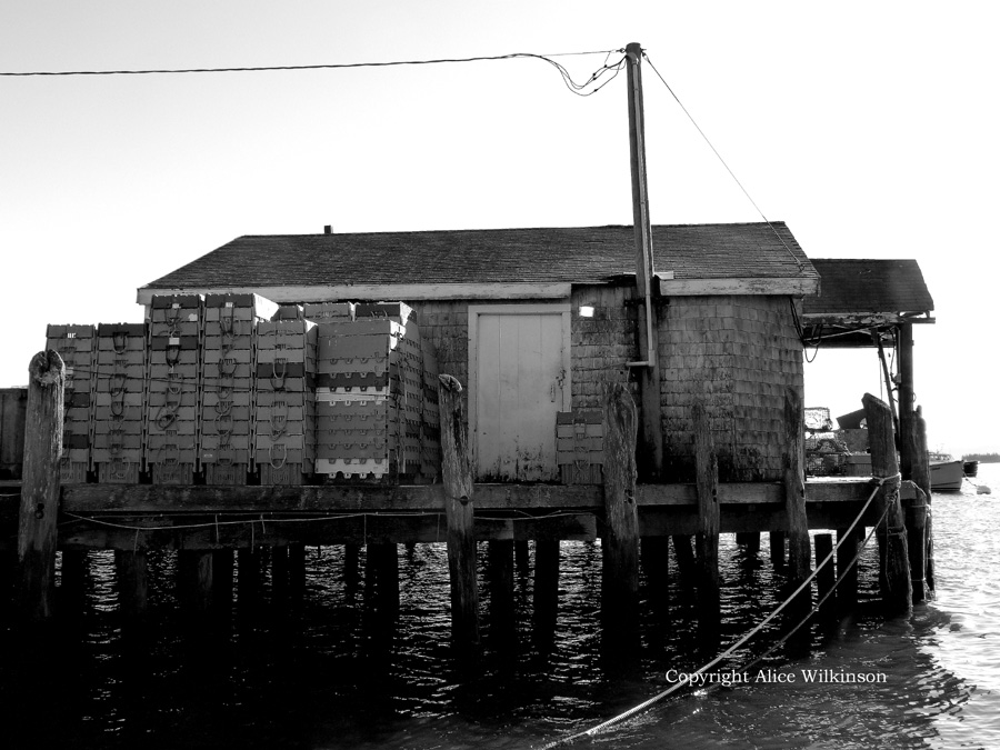 shed on piers
