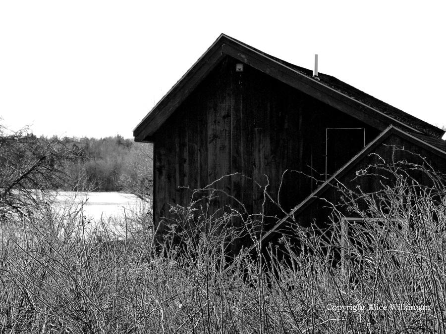 small building in winter