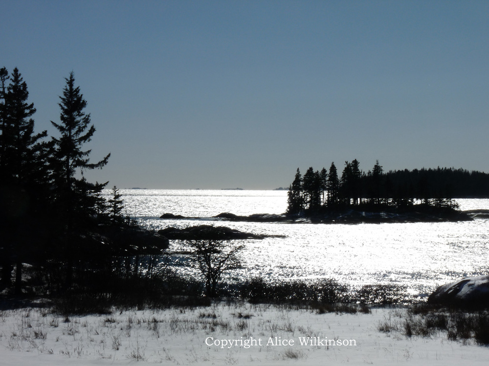 the view from Sand Beach Road