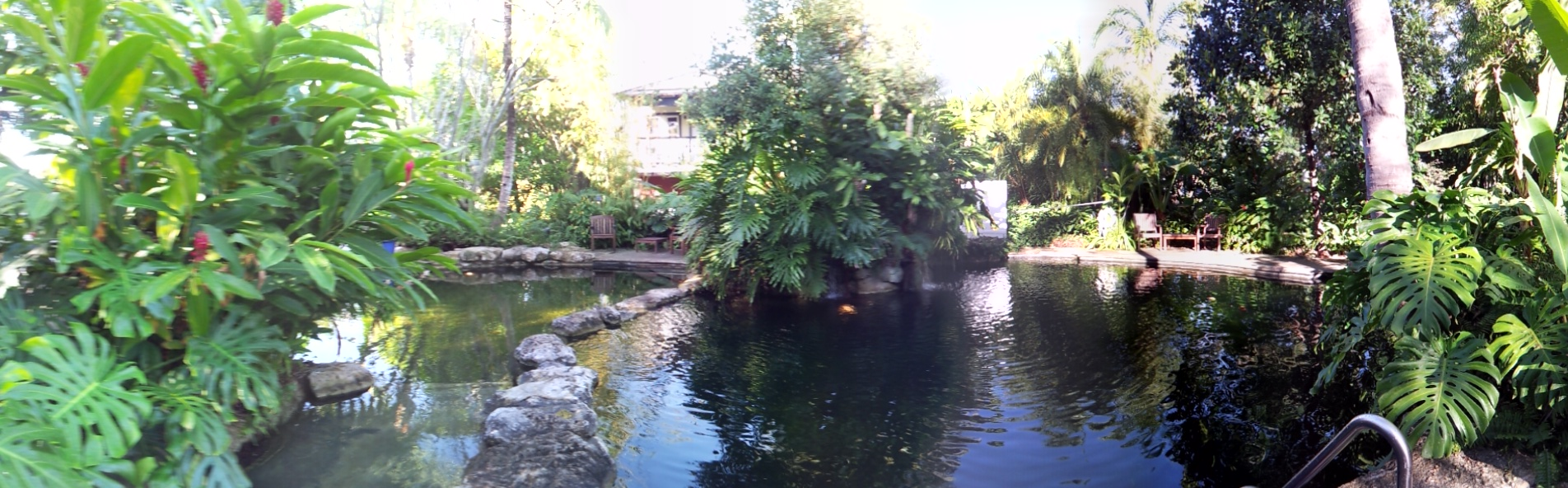 Cenote Freshwater Pool at the Sundy House