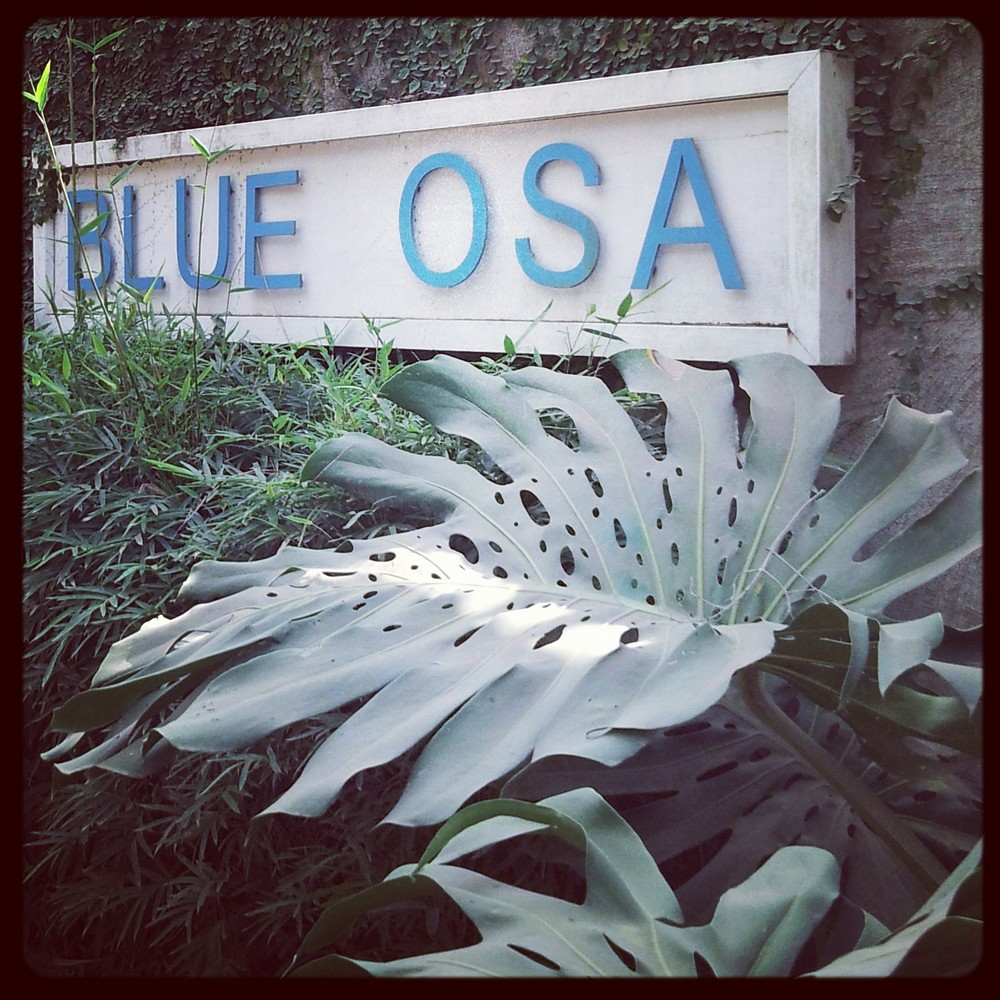 Blue Osa Yoga Resort and Spa