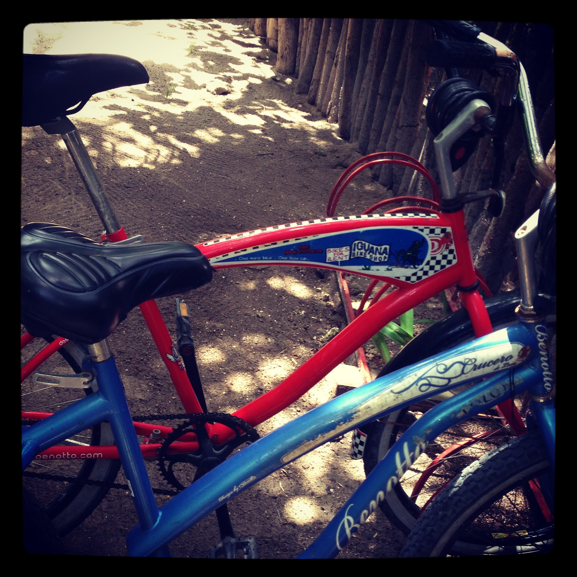 Iguana Bikes