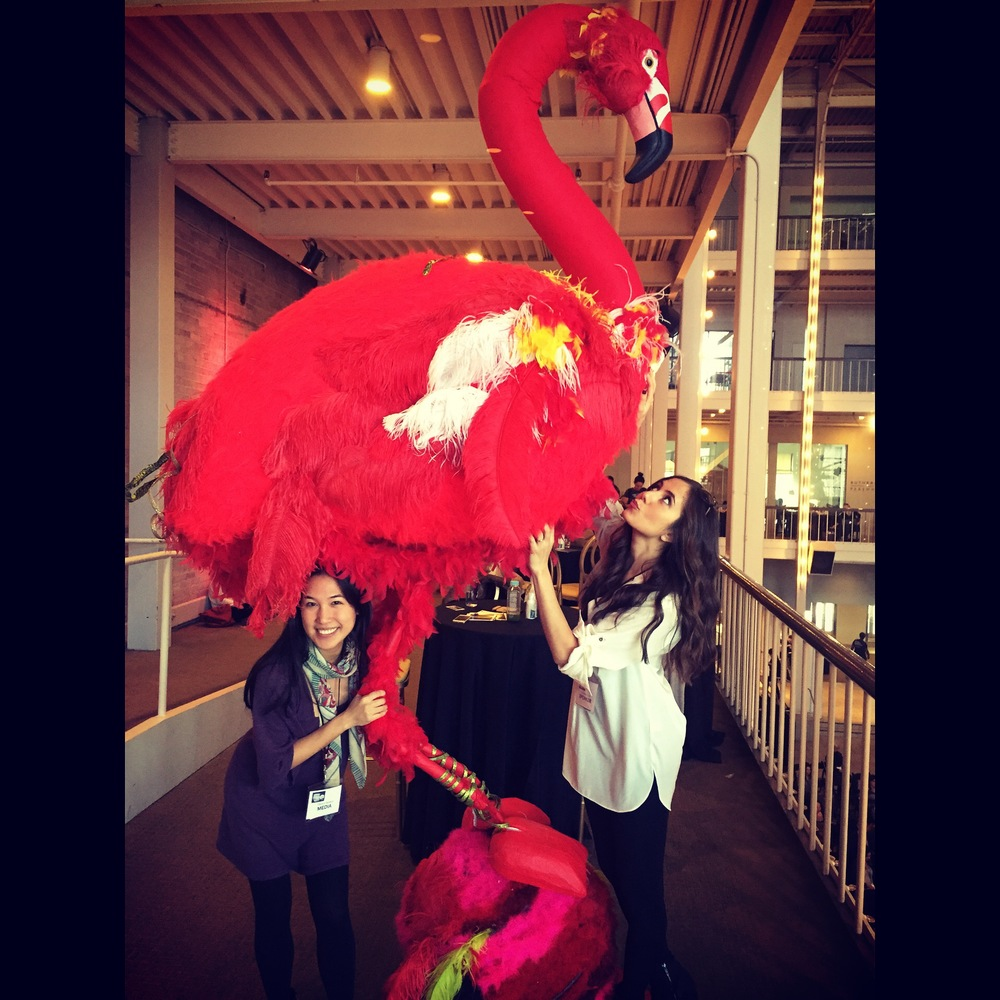 Flamingo-ing around with Courtney Scott, the senior editor and on-air personality for Travelocity.