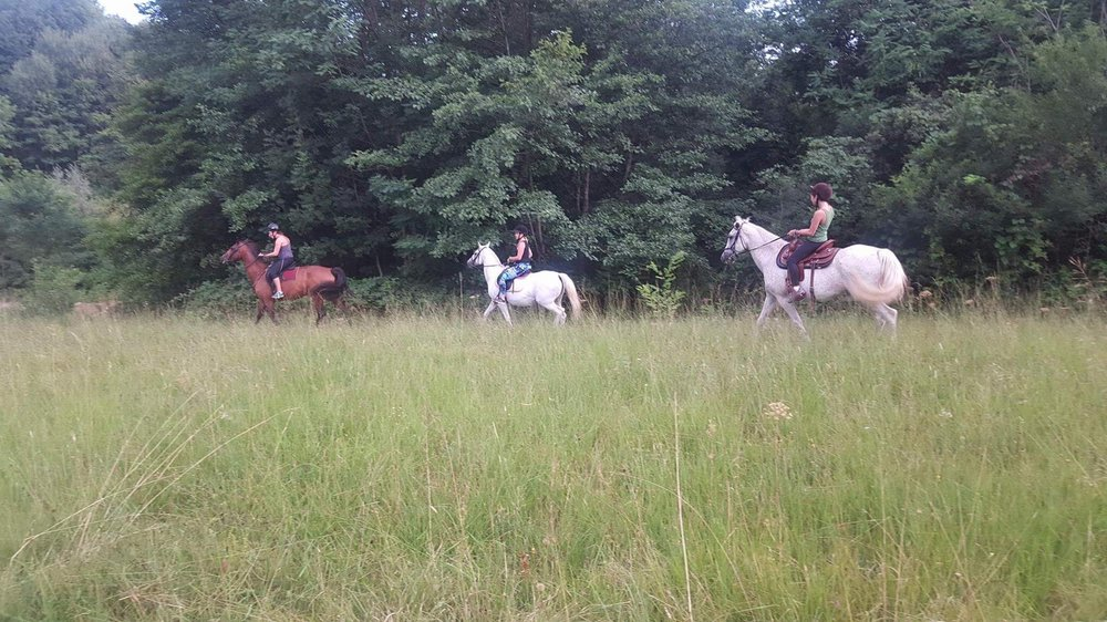 You can also do some horse riding around the forest in Brda.