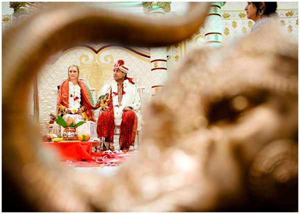 oregon photographer indian wedding elephant