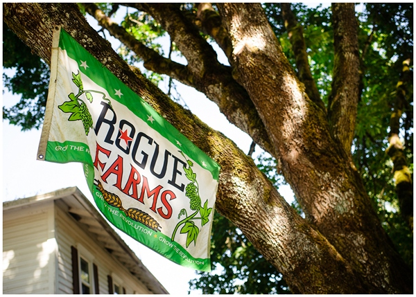 rogue farms reception banner