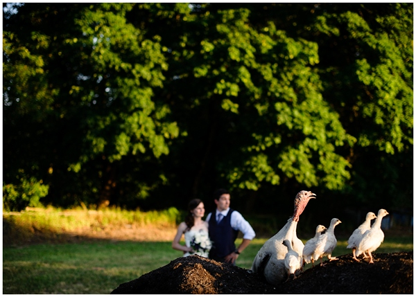 bride groom portrait with turkeys