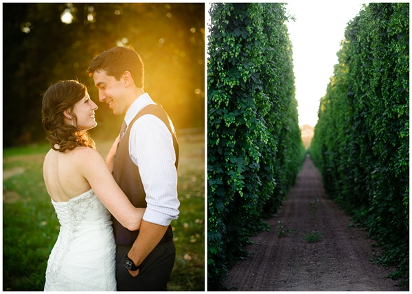 evening sunlight wedding portraits in oregon hops
